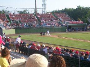 Potomac Nationals Baseball