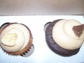 Babycakes Cupcakery- so tasty, yet so far away!